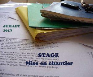 http://www.segolenechailley.fr/stage_ecriture-2016-2017/stage-mise-en-chantier/